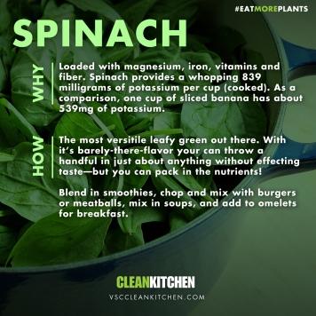 EMP_Spinach