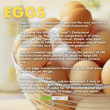 PROTEIN_Eggs