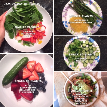 Jamie's plant servings for the day. I took photos of just my plants, not my full meal. I assure you I ate more than plants ha!